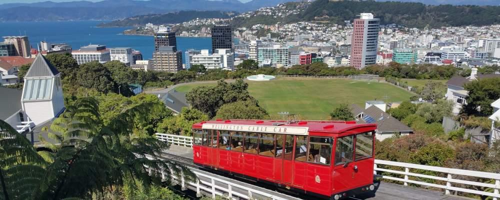 Privatdetektive ermitteln in Neuseeland